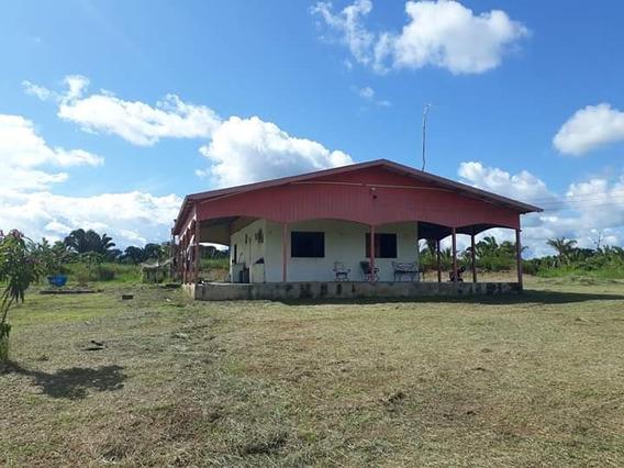 Localização Na Am 254 Km 64 Estrada De Manaus Para Autazes