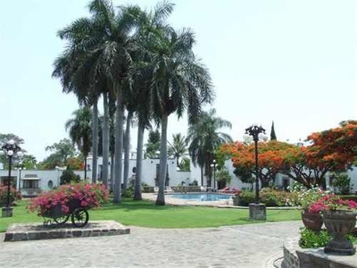 (crm-1404-743) Se Renta Departamento En Planta Baja En La Colonia Palmira Clave Rdd58