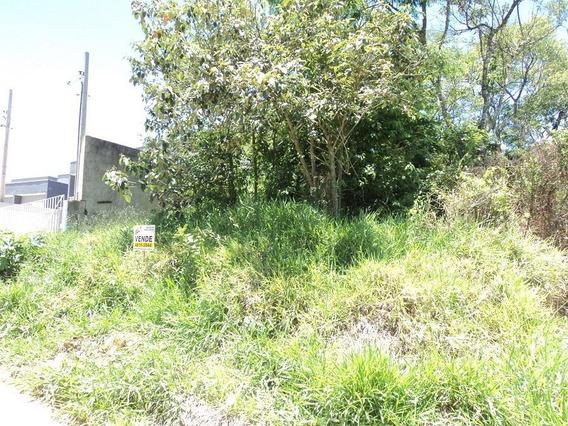 Terreno Em Centreville, Cotia/sp De 0m² À Venda Por R$ 100.000,00 - Te319546