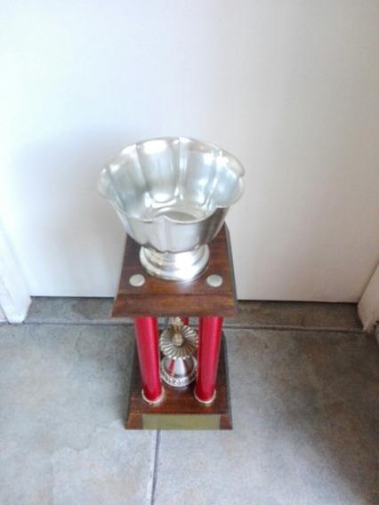 Trofeo 47cm Alto Usado