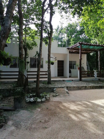 Tulum Venta Casa Amueblada Rodeada De Selva