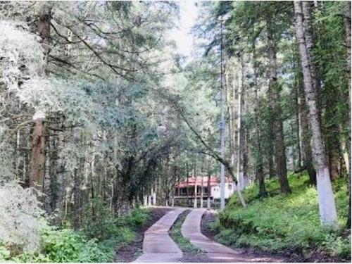 Imagen 1 de 12 de Terreno En Venta El Bosque De Real Del Monte, En Fraccionamiento Campestre