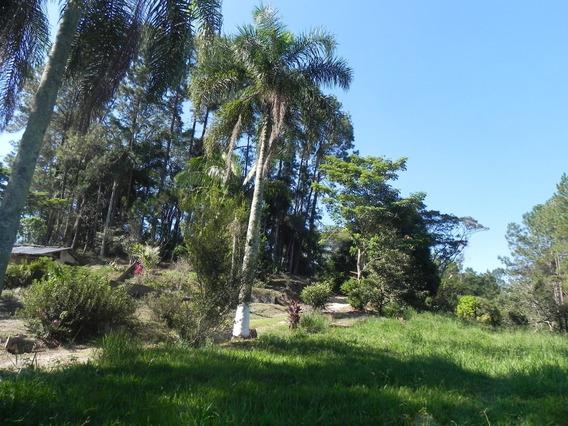 Chácara Ideal Para Casa De Veraneio Em Guararema.