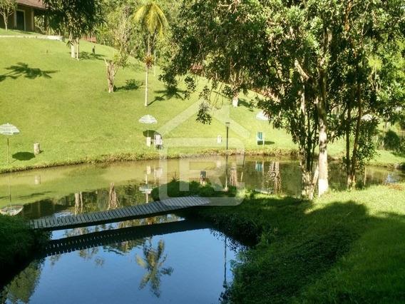 Lindo Sítio Com Casa De Tijolinho Á Vista, Piscina E Lago - 61 - 34453490