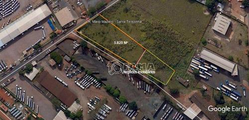 Imagem 1 de 1 de Terreno Para Alugar, 5800 M² Por R$ 11.600,00/mês - Santa Terezinha - Paulínia/sp - Te0622