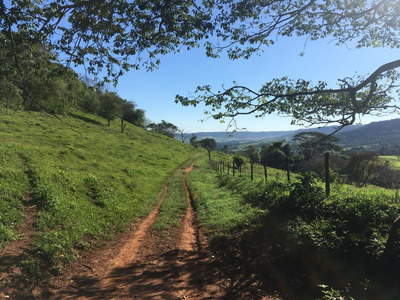 Vendo Fazenda Pecuária Região De São Carlos-sp (6058)