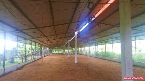 Haciendas - Fincas En Venta Re/max Partners 04144294162
