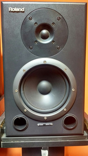 Monitores Estudio Roland Ds90a Usa, Con Entrada Digital! Par