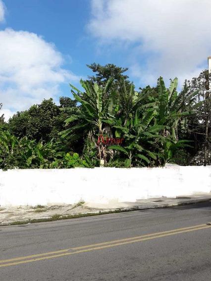 Ótimo Terreno 1542 M² Boa Localização Em São Miguel Paulista - V7626