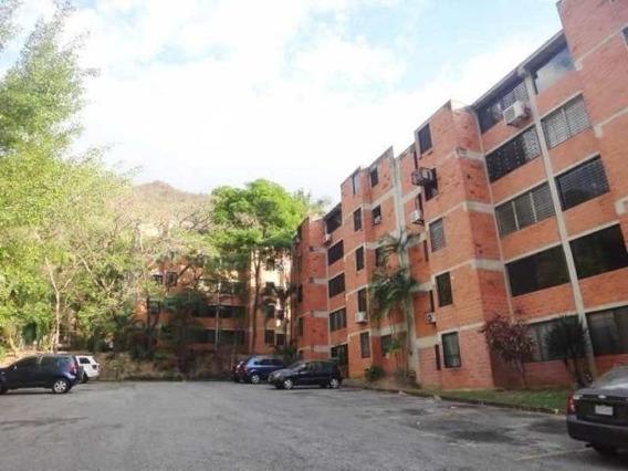 Apartamento En Venta Cod Flex 20-9795 Ma