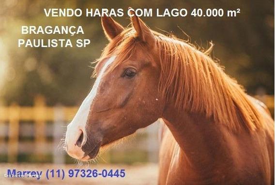Sítio / Chácara Para Venda Em Bragança Paulista, Haras Com Lago, 40.000 M² - Bragança Paulista Sp, 2 Dormitórios, 2 Banheiros, 10 Vagas - 3112