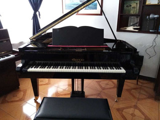 Piano Gaveau Media Cola Frances.