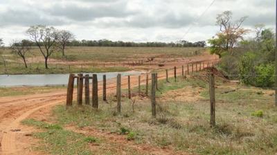 Fazenda Em Nova Alvorada Do Sul - Ms, Dupla Aptidão - 250