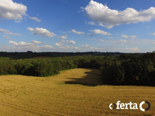 Imagem 1 de 9 de Chacara - Tiete - Ref: 741 - V-741