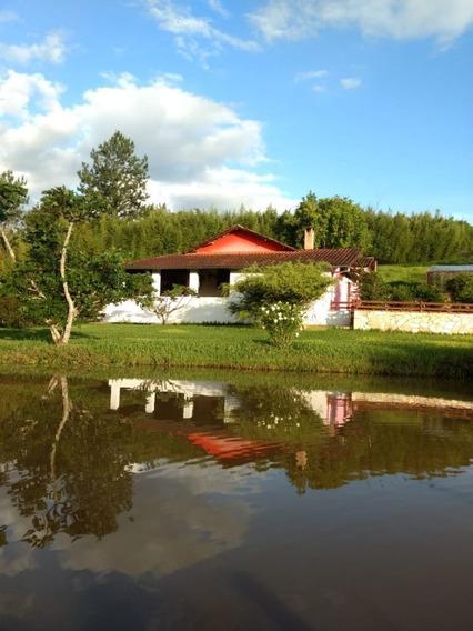 Sitio Caxambu 90.000 M2 Casa Boa Piscina , 05 Klm De Caxambu - 823