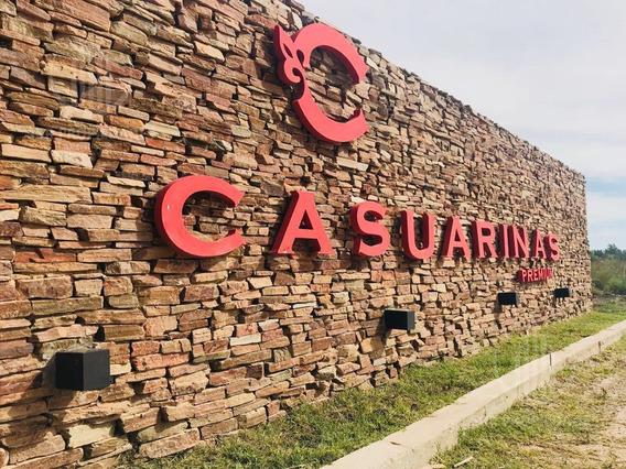 Departamento - Casuarinas Premium