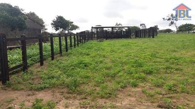 Fazendas À Venda Em Garanhuns/pe - Compre O Seu Fazendas Aqui! - 1413603