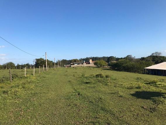 Chácara/sítio À Venda Em Nova Santa Rita 260m2