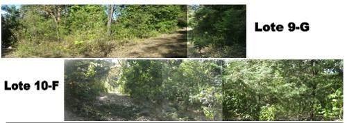 Imagen 1 de 3 de Se Venden Dos Terrenos, Zitacuaro