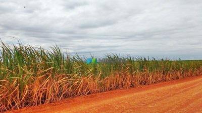 Fazenda Cana De Açúcar - 627 Ha - Região Bambuí (mg) - Codigo: Fa0054 - Fa0054