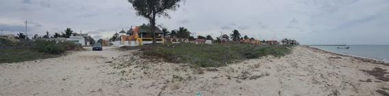 Excelente Terreno En Venta En La Playa De Telchac Puerto, Yucatan