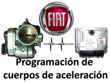 Cuerpo De Aceleración Fiat (escaneo Y Programación)