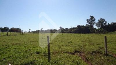 Chacara/fazenda/sitio - Jardim Do Cedro - Ref: 188959 - V-188959