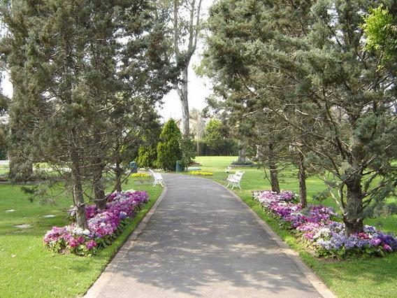 Parcela En Cementerio Parque Colonial