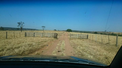 Fazenda Para Venda Em Uberaba, Área Rural - L259