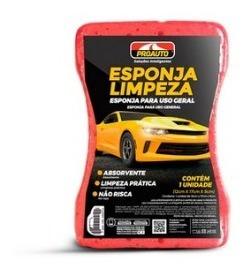 Imagem 1 de 1 de Esponja De Limpeza - Proauto