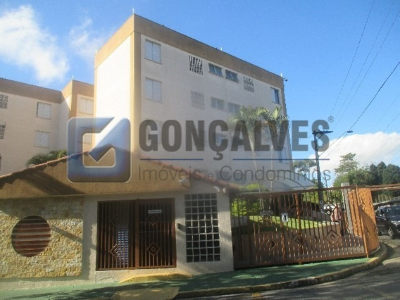 Venda Apartamento Santo Andre Bairro Jardim Ref: 135182 - 1033-1-135182