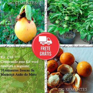 Maracujá Anão Do Mato Sementes Da Fruta P/ Vasos E Mudas