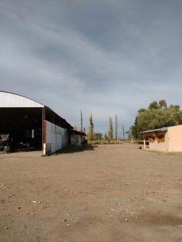 Campo - Bowen