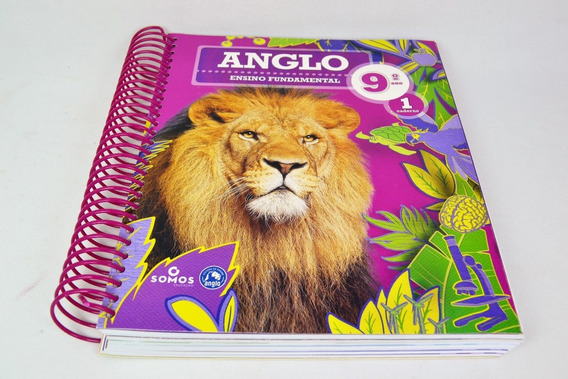Apostila Anglo Ensino Fundamental 8 Ano Caderno 1 (novo)