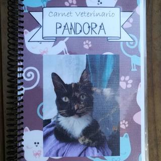 Carnet Veterinario Para Perro O Gato.