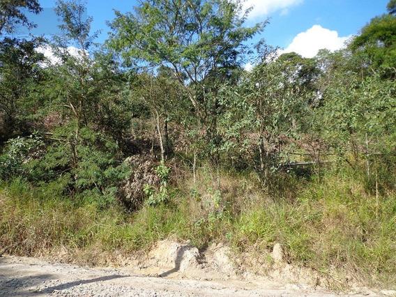 Terreno Para Venda, 271040.0 M2, Centro - São Roque - 1232