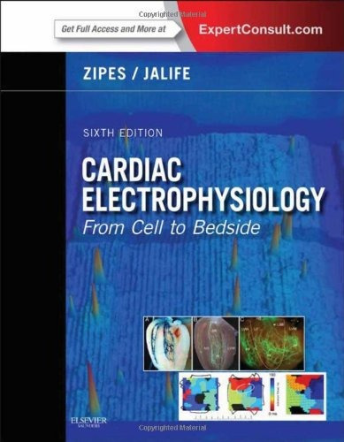 Cardiac Electrophysiology - From Cell To Bedside