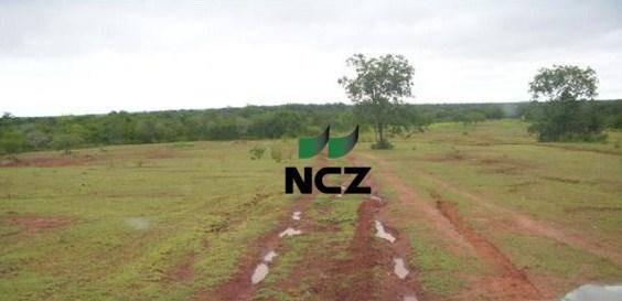 Fazenda À Venda, 113000000 M² Por R$ 14.690.000,00 - Zona Rural - Bom Jesus/pi - Fa0074