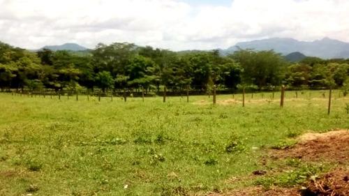 Imagen 1 de 12 de 520 Mzs Sébaco - Matagalpa