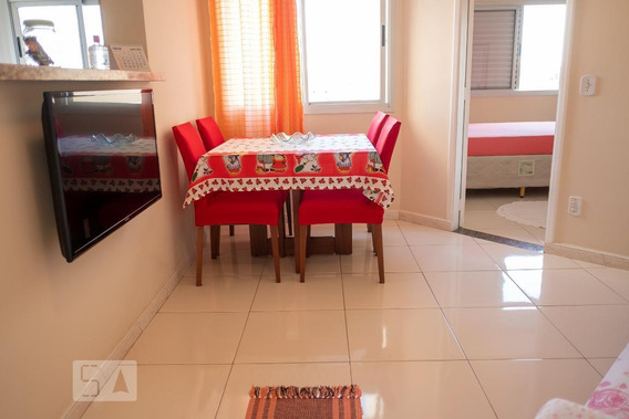 Apartamento Para Aluguel - Itaquera, 1 Quarto, 37 - 893102611