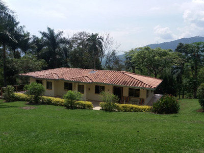 Venta De Finca En Fredonia Suroeste De Antioquia
