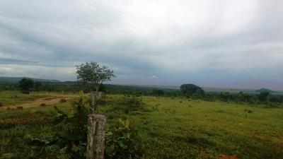 Fazenda A Venda Em Itiquira - Mt (pecuária) - 780