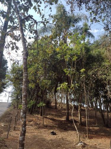 Imagem 1 de 14 de D20- Garanta Ja Seu Terreno Em Santa Isabel 1.000m2