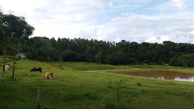 Vende-se Sitio C/ 5 Alqueires No Municipio De Monte Sião Mg