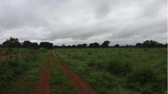 Fazenda Para Venda Em Nossa Senhora Do Livramento, Alphaville - 860197