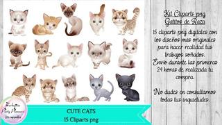 15 Cliparts Png Cats Gatos Gatitos