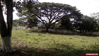 Terrenos En Venta Tinaquillo