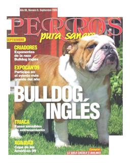 Revista Interés General El Bulldog Inglés Sept 2009