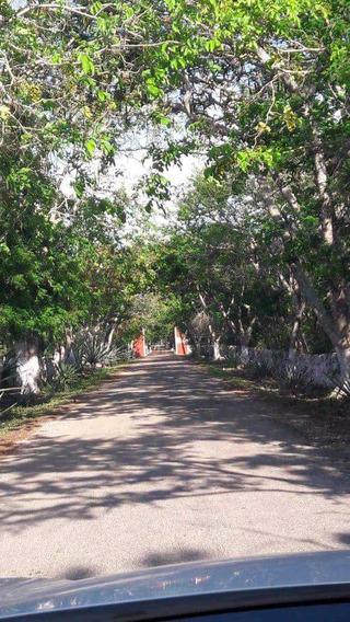 Venta De Lotes Campestres En Desarrollo Naturae De Yaxcucul, Yucatán