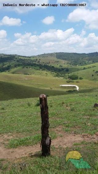 Fazenda Para Venda Em Canhotinho, Zona Rural - Fz-026